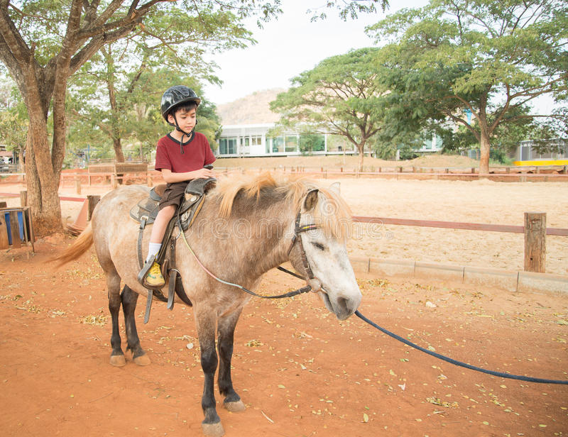 Lycklig pojke på ponny royaltyfri foto