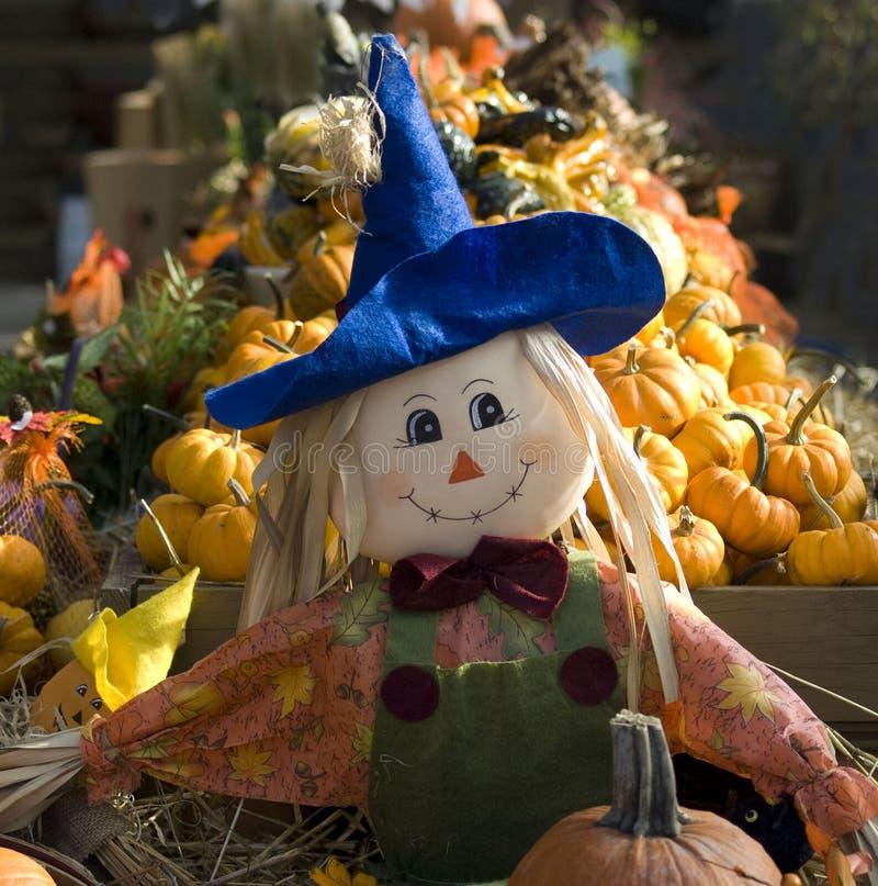 lycklig scarecrow royaltyfri foto