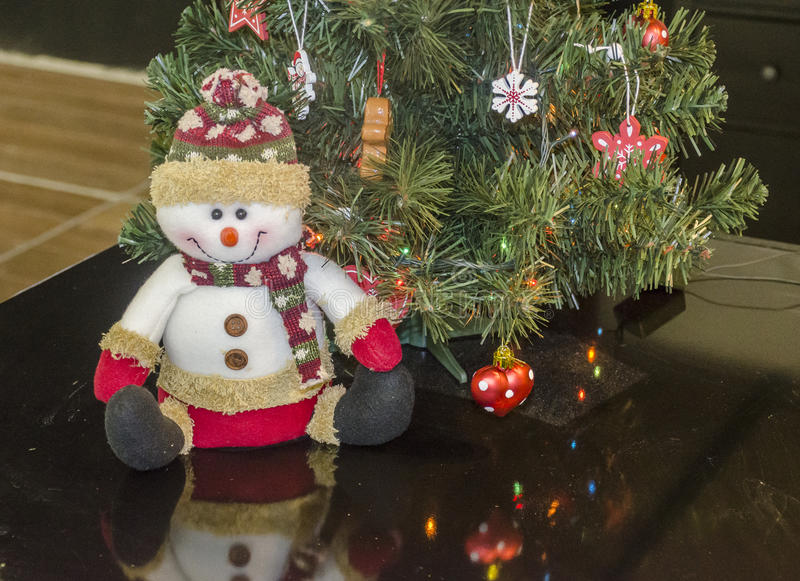 Lycklig snögubbedocka royaltyfri foto