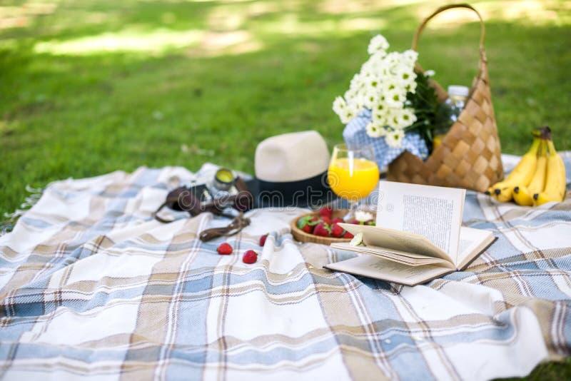 Lycklig solig dag på en picknick i parkera Blommor, frukter, drinkar, en bok, en hatt, en korg och en filt kopiera avstånd fotografering för bildbyråer