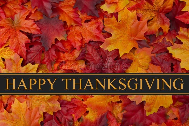 Lycklig tacksägelsehälsning arkivfoto