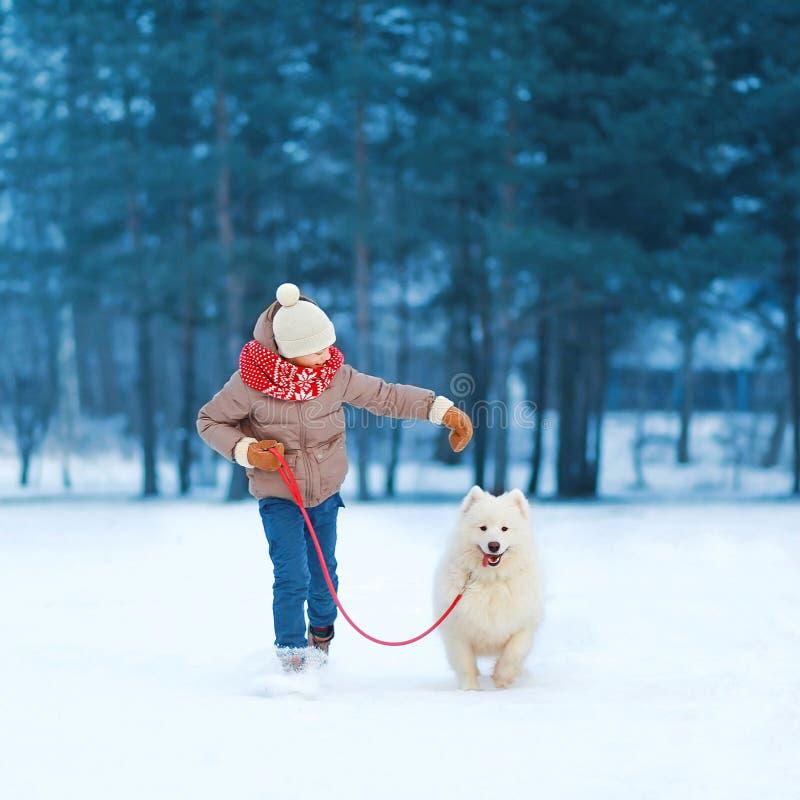 Lycklig tonåringpojkespring och spela med den vita Samoyedhunden utomhus i parkera på en vinterdag royaltyfri bild
