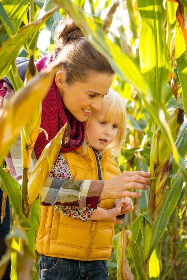 Lycklig undersökande cornfield för moder och för barn royaltyfria bilder