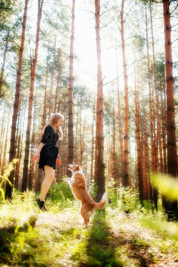 Lycklig ung flicka i skogen med hennes hund som hoppar och spelar royaltyfria bilder
