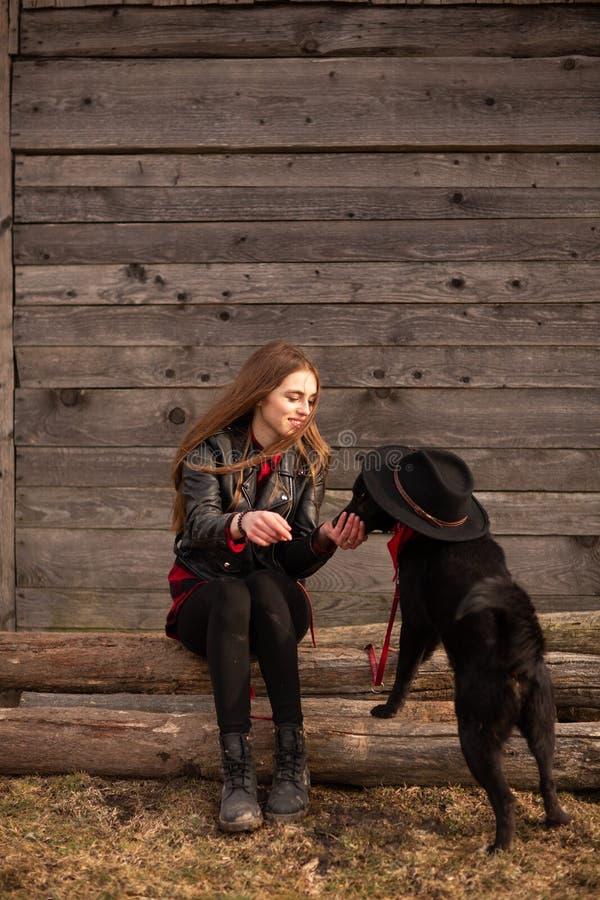 Lycklig ung kvinna som plaing med hennes svarta hund i fron av det gamla tr?huset Flickan f?rs?ker en hatt till hennes hund arkivfoto