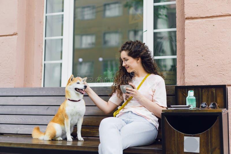 Lycklig ung kvinna som utomhus dricker te i kafét som slår den gulliga shibainuvalpen arkivfoto