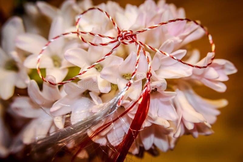 Lycklig vårhyacint och Martisor royaltyfri bild