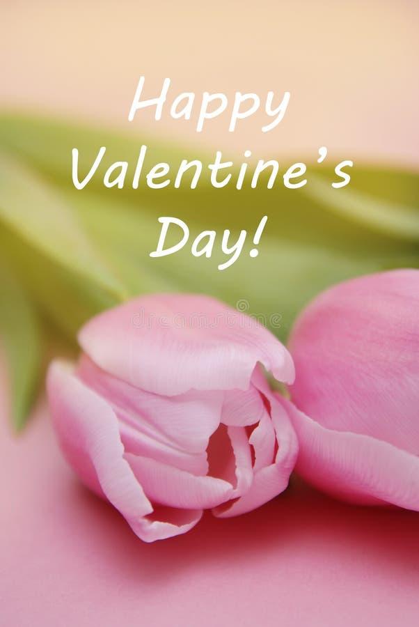 Lycklig Valentine' hälsning för s-dagbakgrund Rosa tulpanblommor på rosa bakgrund Lycklig Valentine' s-daginskrift fotografering för bildbyråer