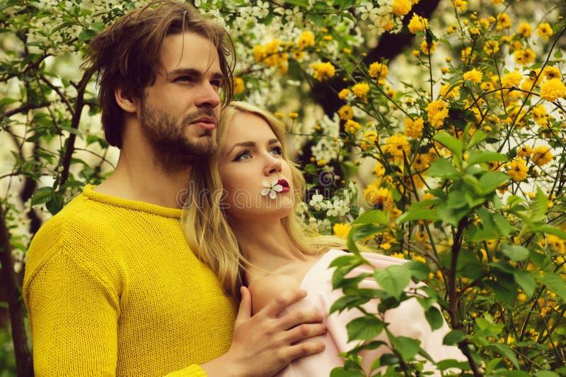 Lyckliga älska par parkerar in körsbärsröda gula blommor i blomning arkivfoton