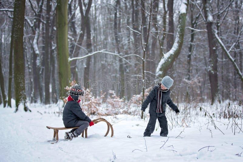 Lyckliga barn i en vinter parkerar och att spela samman med en pulka fotografering för bildbyråer