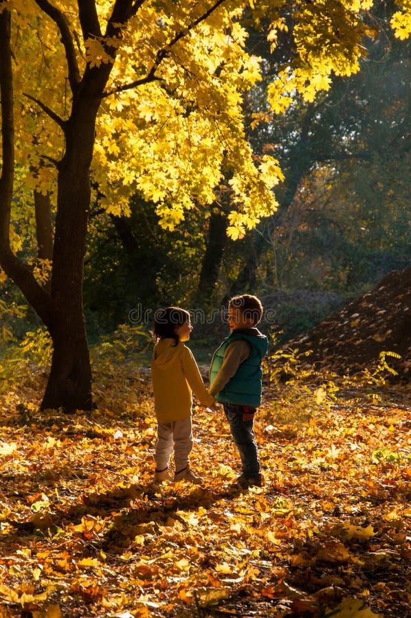 Lyckliga barn som går i hösten, parkerar royaltyfri foto