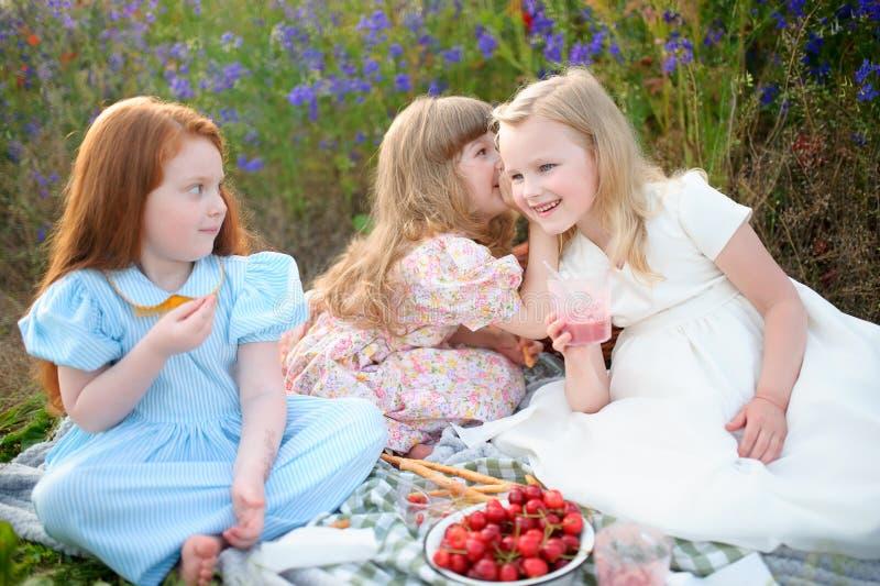 Lyckliga barn som har picknicken utomhus Två flickvänner delade se arkivfoto