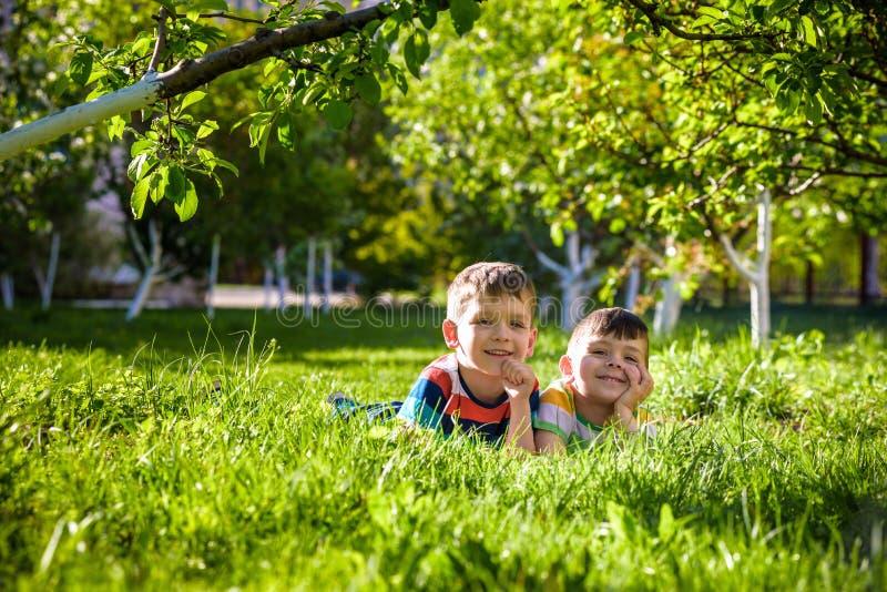 Lyckliga barn som har roligt utomhus Ungar som spelar i sommar, parkerar Pys och hans broder som l?gger p? gr?n ny gr?sferie arkivfoton