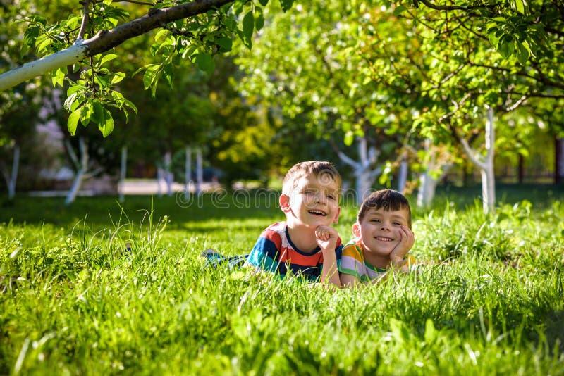 Lyckliga barn som har roligt utomhus Ungar som spelar i sommar, parkerar Pys och hans broder som l?gger p? gr?n ny gr?sferie royaltyfria bilder
