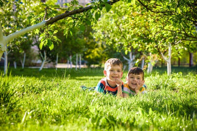 Lyckliga barn som har roligt utomhus Ungar som spelar i sommar, parkerar Pysen och hans broder som lägger på grönt nytt gräs, sem arkivbild