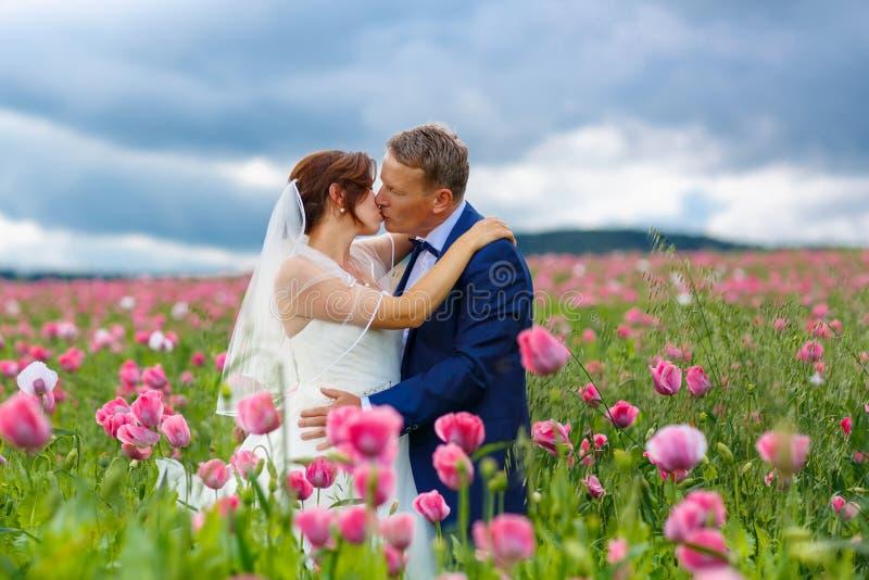 Lyckliga brölloppar i rosa vallmofält royaltyfria foton