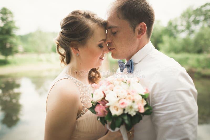 Download Lyckliga Brölloppar Som Kramar Och Ler Sig På Bakgrundssjön, Skog Arkivfoto - Bild av lampa, ceremoni: 78726802