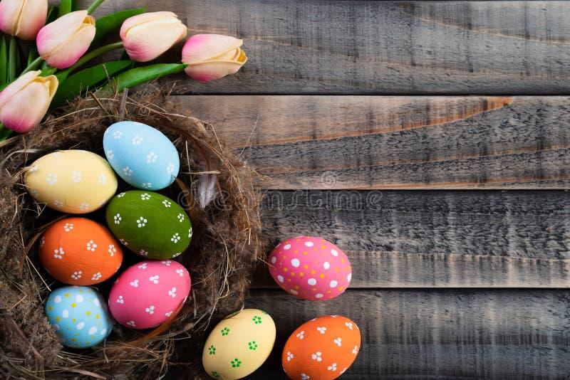 Lyckliga easter! Färgglat av påskägg i rede med rosa tulpan och fjäder på träbakgrund royaltyfri foto