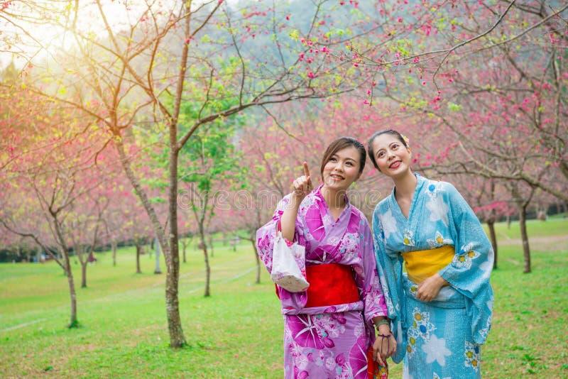 Lyckliga eleganta flickor som bär den japanska kimonot royaltyfria foton