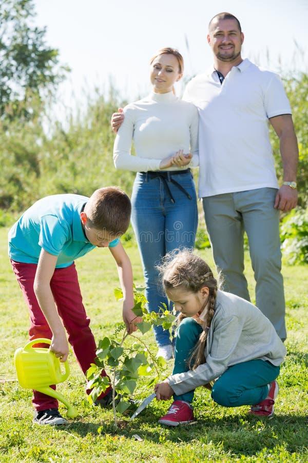 Lyckliga föräldrar med två ungar som förlägger ett nytt träd royaltyfria bilder
