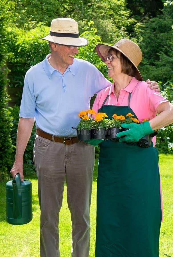 Lyckliga höga par i trädgården som stirrar på de fotografering för bildbyråer