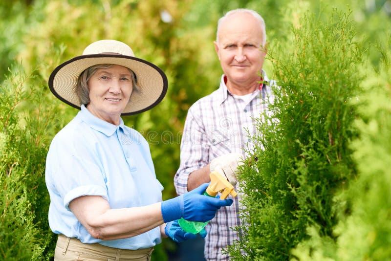 Lyckliga höga par som tillsammans arbetar i trädgård arkivfoto