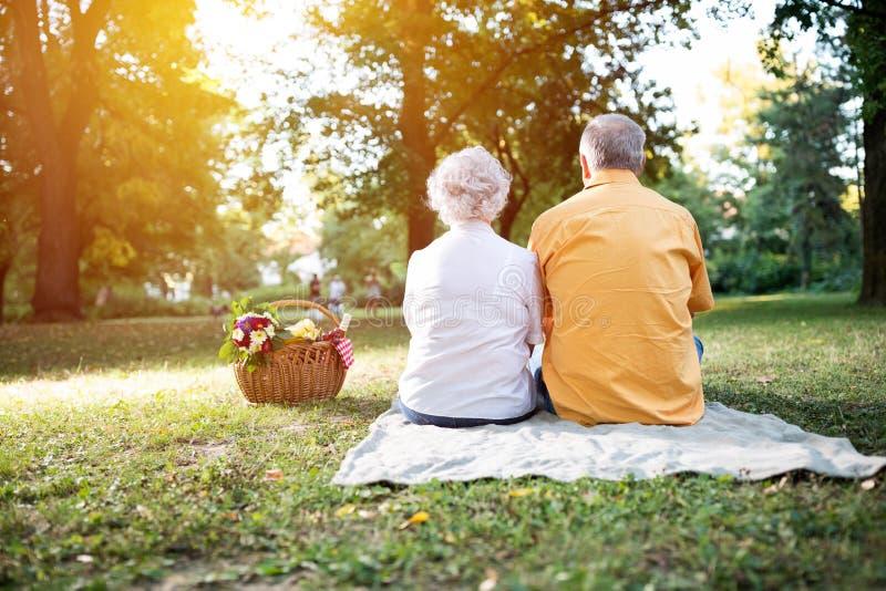 Lyckliga höga par som tycker om en picknick i parkera arkivbild