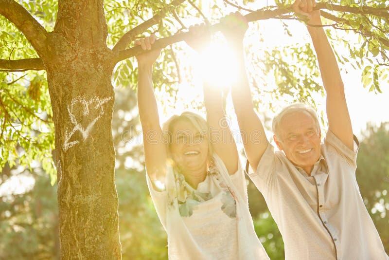 Lyckliga höga par under ett träd fotografering för bildbyråer