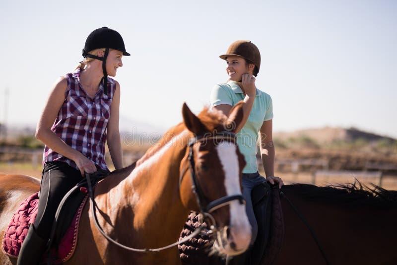 Lyckliga kvinnliga vänner som talar medan hästryggridning fotografering för bildbyråer
