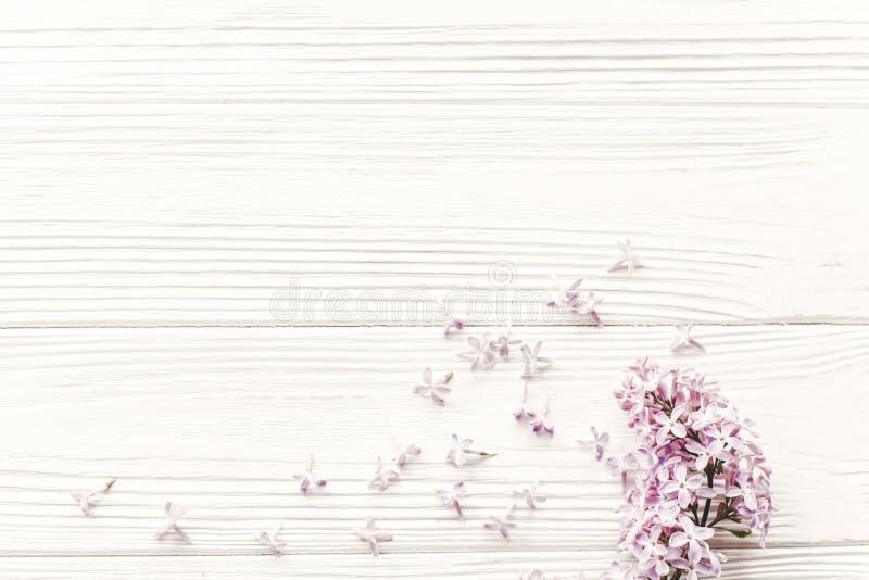 lyckliga mödrar för dag den härliga lilan blommar på lantlig vit woode royaltyfri bild