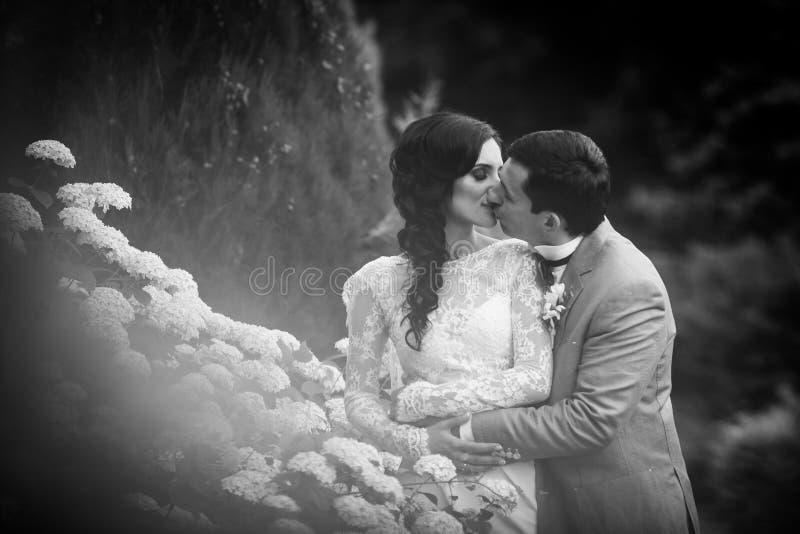 Lyckliga nygift personpar som kramar nära buskeb&w för vit blomma arkivbilder