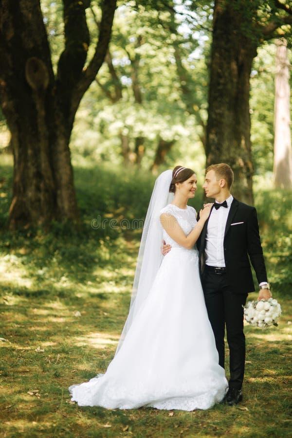 Lyckliga par går i parkerar i deras gifta sig dag Brudgum och brud royaltyfria bilder