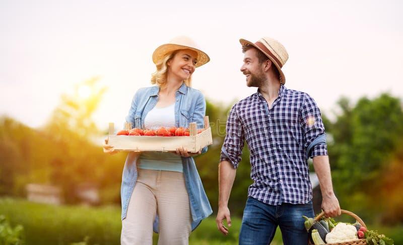 Lyckliga par i organisk trädgård royaltyfri foto