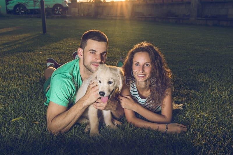 Lyckliga par med valphunden i landet Valpavelgolden retriever Par i en solnedgång med valphunden royaltyfria foton