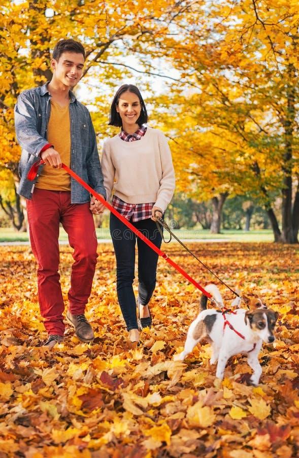 Lyckliga par som utomhus går i höst, parkerar med hundkapplöpning arkivbild