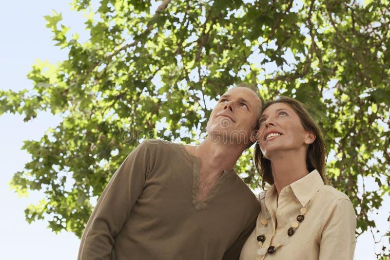 Lyckliga par under trädet som bort ser arkivbilder