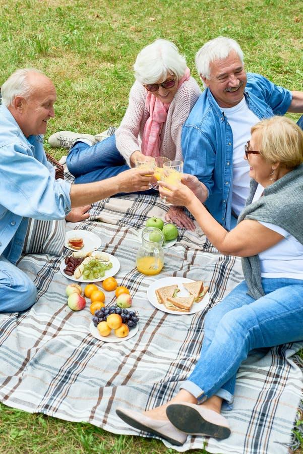 Lyckliga pensionärer som tycker om picknicken parkerar in royaltyfria bilder