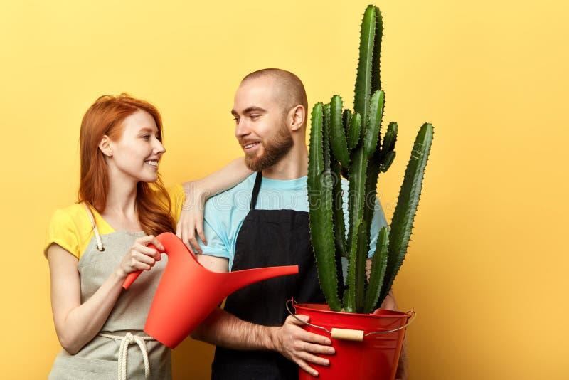 Lyckliga positiva blomsterhandlare med att bevattna kan posera till kameran fotografering för bildbyråer