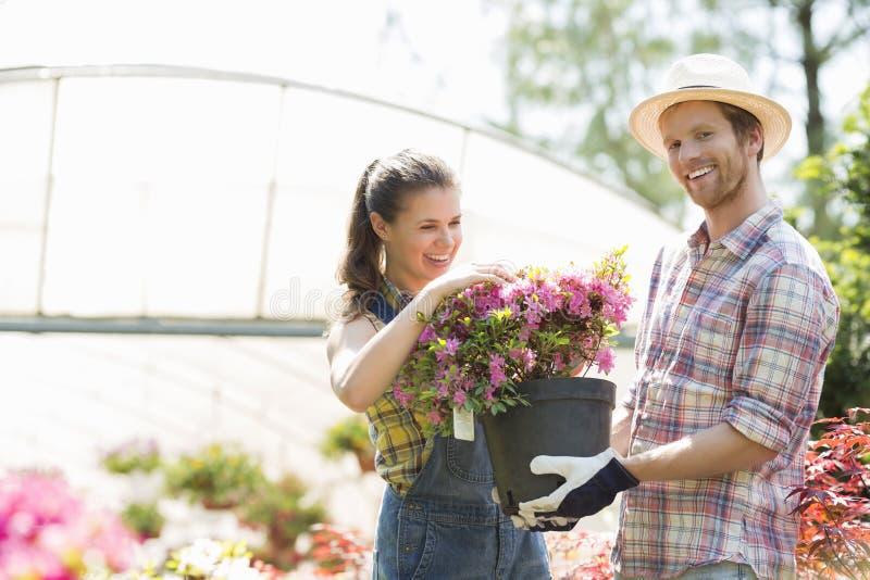Lyckliga trädgårdsmästare som rymmer blomkrukan utanför växthus royaltyfria bilder