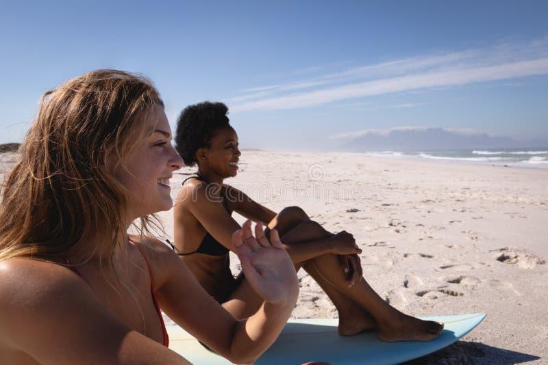 Lyckliga unga kvinnor som sitter på surfingbrädan på stranden i solskenet arkivfoto
