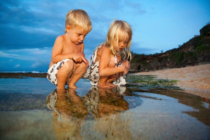 Lyckliga ungar har en gyckel på solnedgångstranden royaltyfri fotografi