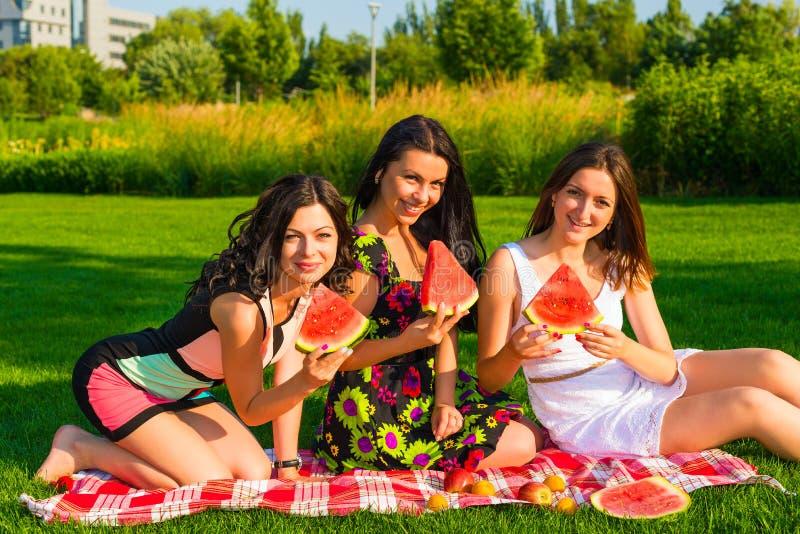 Lyckliga vänner på picknick på gräsmattan royaltyfri foto
