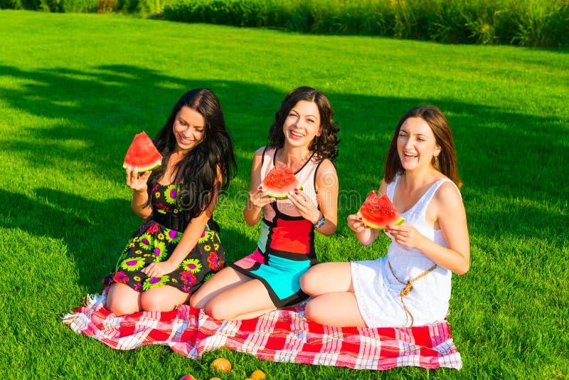 Lyckliga vänner på picknick på gräsmattan royaltyfri bild