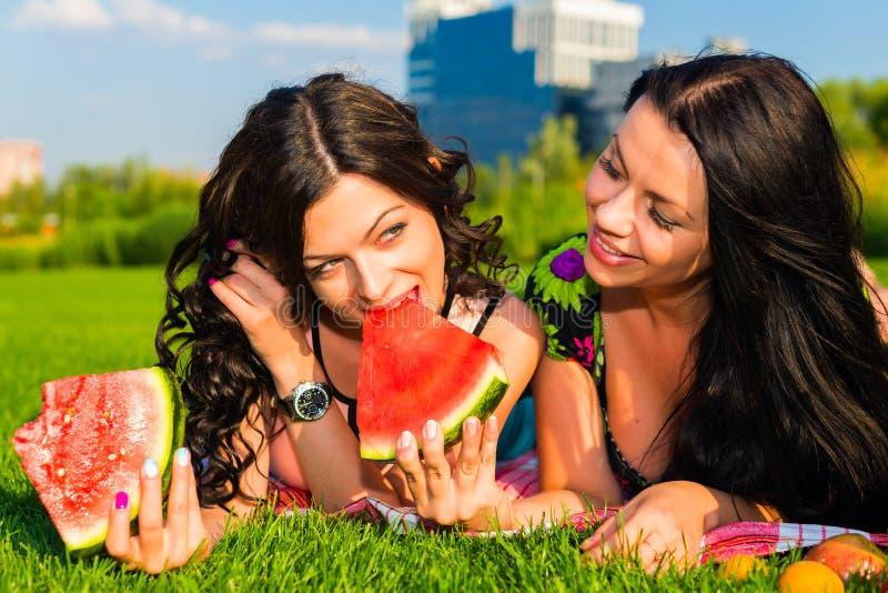 Lyckliga vänner på picknick på gräsmattan royaltyfria foton