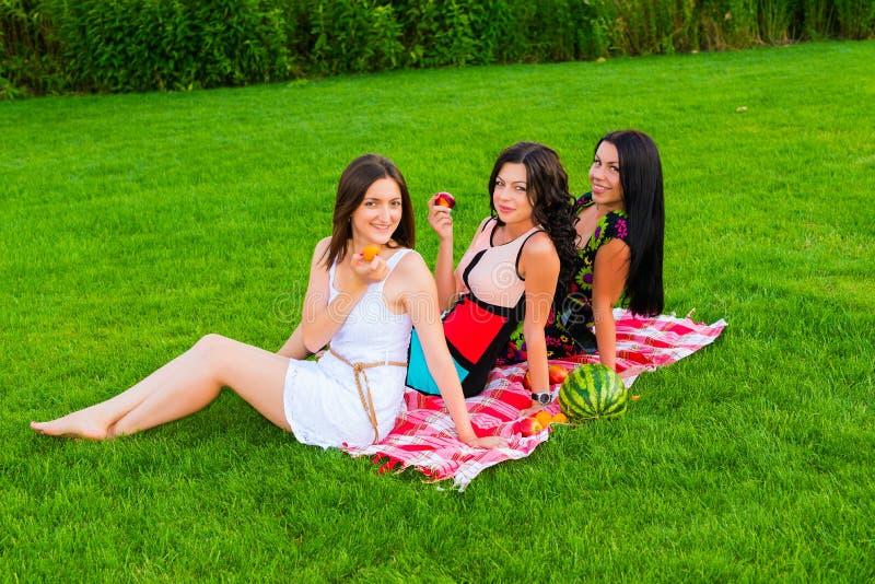Lyckliga vänner på picknick parkerar in royaltyfri fotografi