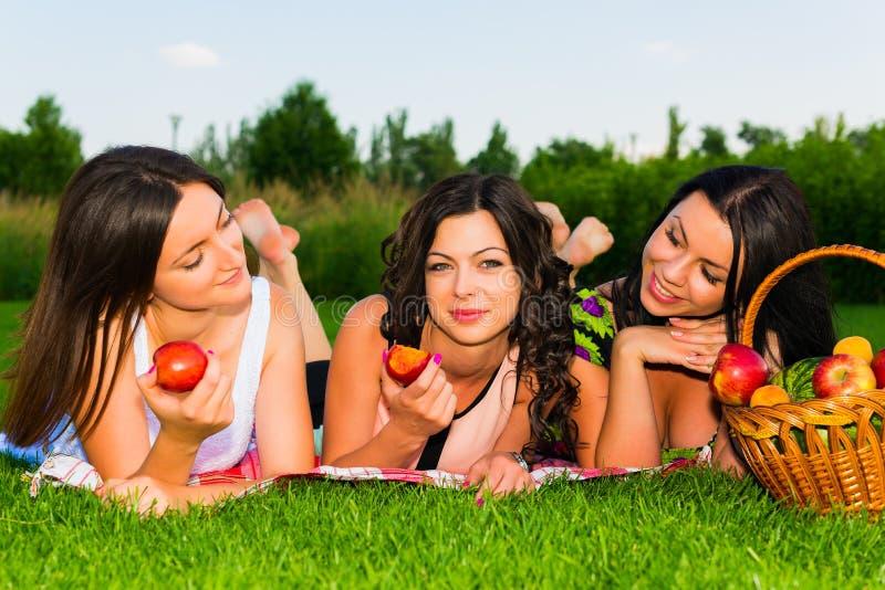 Lyckliga vänner på picknick parkerar in arkivfoto