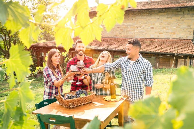 Lyckliga vänner som har gyckel som dricker vin på vinodlingvingården royaltyfria bilder