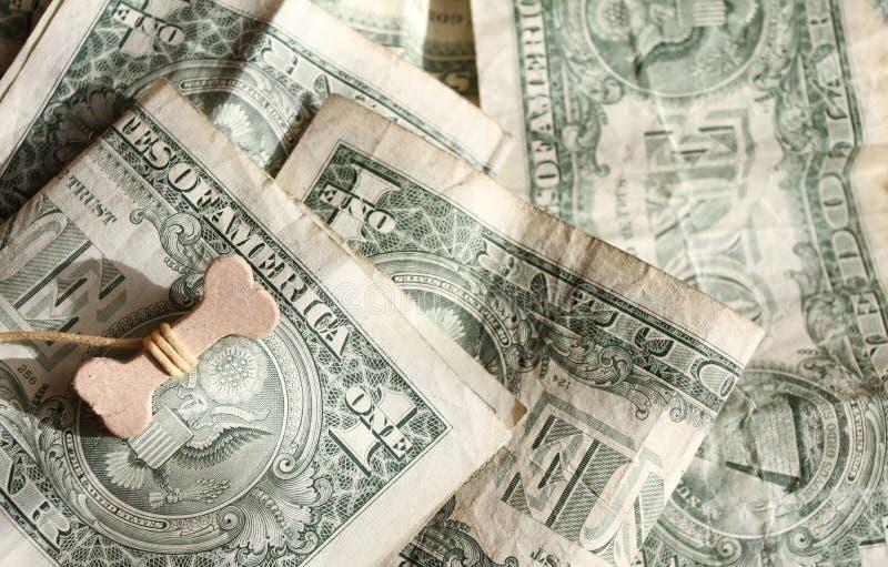 Lyckligt år av det hundbegreppet 2018 Ben på US dollar Bakgrund för US-dollar Välstånd, lycka och framgång arkivfoto