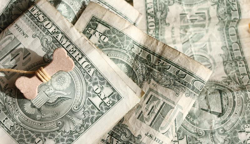 Lyckligt år av det hundbegreppet 2018 Ben på US dollar Bakgrund för US-dollar Välstånd, lycka och framgång arkivbild