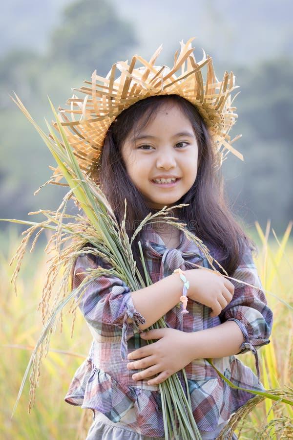 Lyckligt asiatiskt barn i risfält royaltyfria bilder